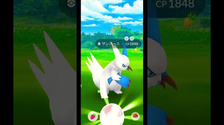【ポケモンGO】 PokémonGO 今ではない感じの 色違い ポケモン が来てしまう。 ザングース